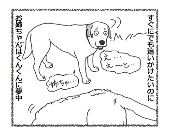 羊の国のラブラドール絵日記シニア!!「コンビの絆?」2