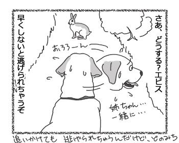 羊の国のラブラドール絵日記シニア!!「コンビの絆?」3