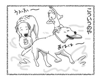 羊の国のラブラドール絵日記シニア!!「四日目なのに」1