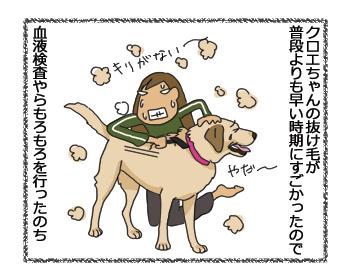 羊の国のラブラドール絵日記シニア!!「ペッツベストさんプロモーション記事1」5