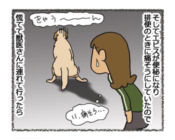 羊の国のラブラドール絵日記シニア!!「ペッツベストさんプロモーション記事1」7