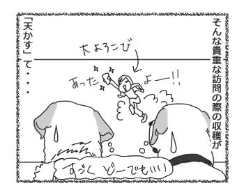 羊の国のラブラドール絵日記シニア!!「わざわざ」4