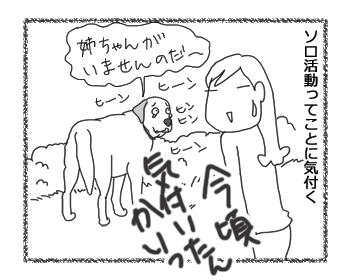 羊の国のラブラドール絵日記シニア!!お散歩ソロ活動5