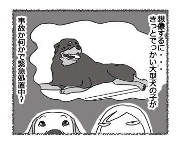 羊の国のラブラドール絵日記シニア!!「はずれ!」3