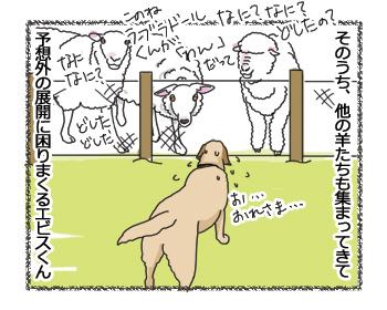 羊の国のラブラドール絵日記シニア!!「ファームドッグへの道のりPart3」3