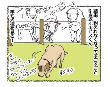 羊の国のラブラドール絵日記シニア!!「ファームドッグへの道のりPart3」4