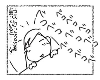 羊の国のラブラドール絵日記シニア!!「ペットボトル鼓笛隊、再び!」3