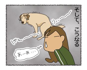 羊の国のラブラドール絵日記シニア!!「犬種ならでは?」4