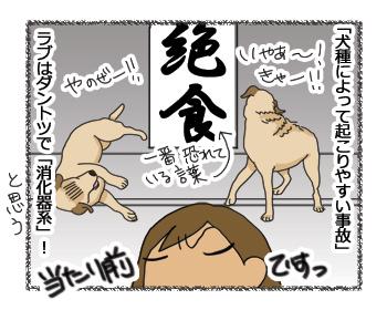 羊の国のラブラドール絵日記シニア!!「犬種ならでは?」8