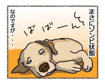 羊の国のラブラドール絵日記シニア!!「女子の魅力は」4コマ2