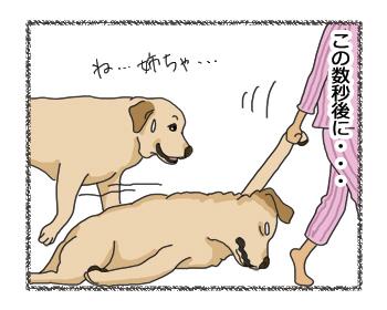 羊の国のラブラドール絵日記シニア!!「女子の魅力は」4コマ3