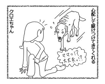 羊の国のラブラドール絵日記シニア!!「お選びください」4コマ3