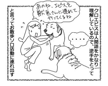 羊の国のラブラドール絵日記シニア!!「真っ白なウソ」1