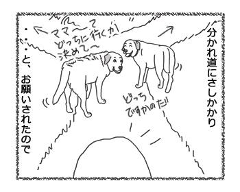 羊の国のラブラドール絵日記シニア!!「彼女か!」2