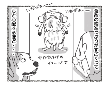 羊の国のラブラドール絵日記シニア!!「いねがぁ~」3