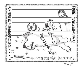 羊の国のラブラドール絵日記シニア!!「ギャップがたまらない・・・」4
