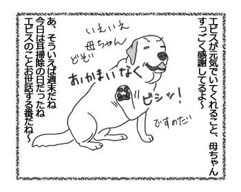 羊の国のラブラドール絵日記シニア!!「姉ちゃんのためなら」2