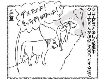羊の国のラブラドール絵日記シニア!!「可愛い意地っ張り」1