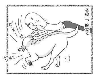 羊の国のラブラドール絵日記シニア!!「クロエ禁止事項」2