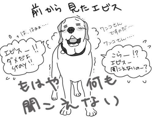 羊の国のラブラドール絵日記シニア!!「聞こえませんのだ」2