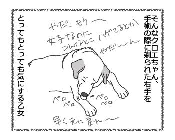 羊の国のラブラドール絵日記シニア!!「乙女の悩み」2B