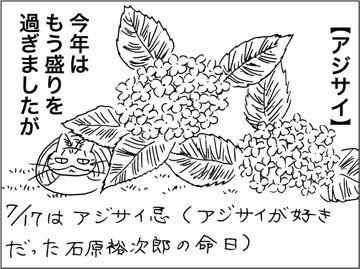 kfc160601.jpg