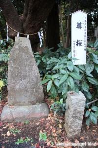 北野天神社(所沢市小手指元町)41