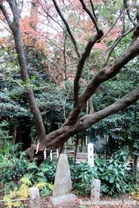 北野天神社(所沢市小手指元町)42