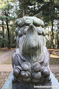鳩峰八幡神社(所沢市久米)34