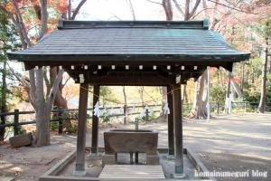 安松神社(所沢市下安松)17