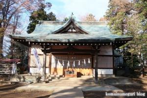 安松神社(所沢市下安松)18