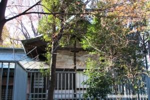 安松神社(所沢市下安松)21