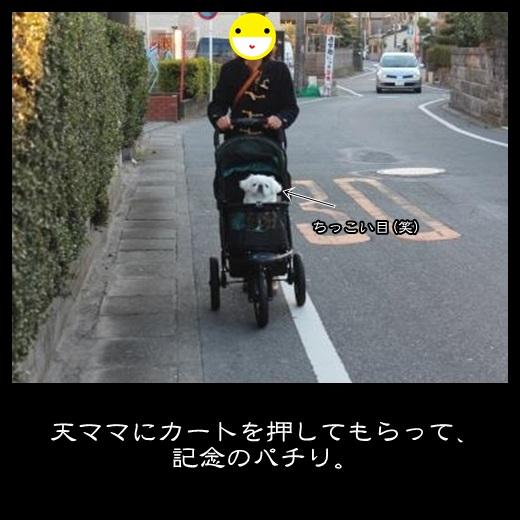 20131228151119d7b.jpg