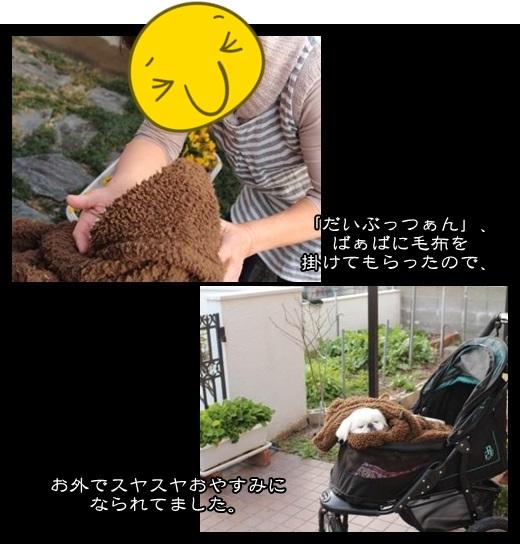 2_2014020108470707b.jpg