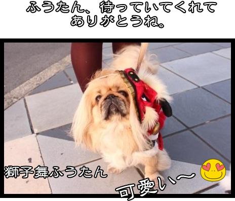 7_2014020109464191e.jpg