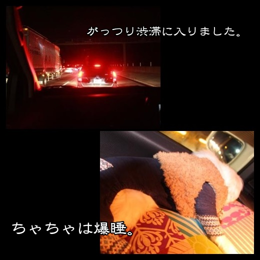 92_20140201094648b6a.jpg