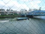 sumidagawa3.jpg