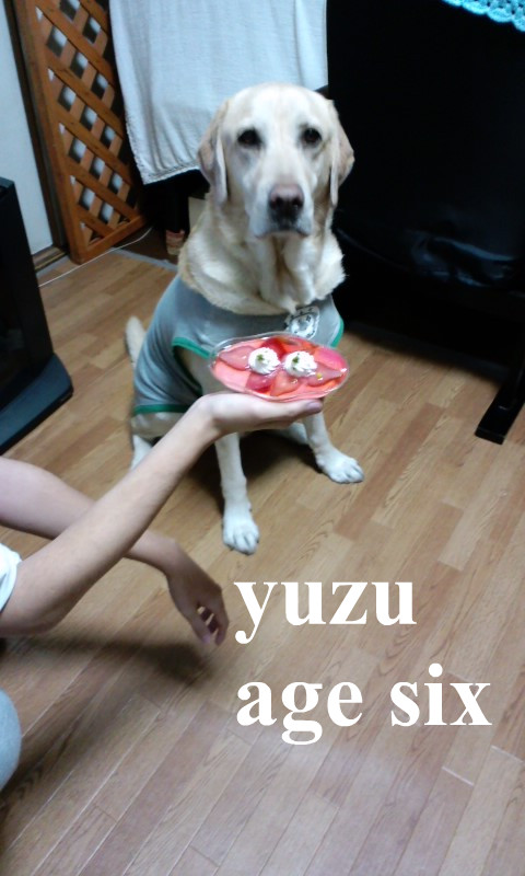 120106_2310~01