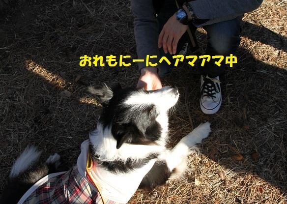 IMG_4966.jpg