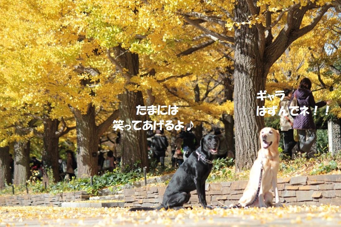 IMG_7460.jpg