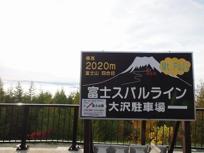 s-1-01PA121409.jpg