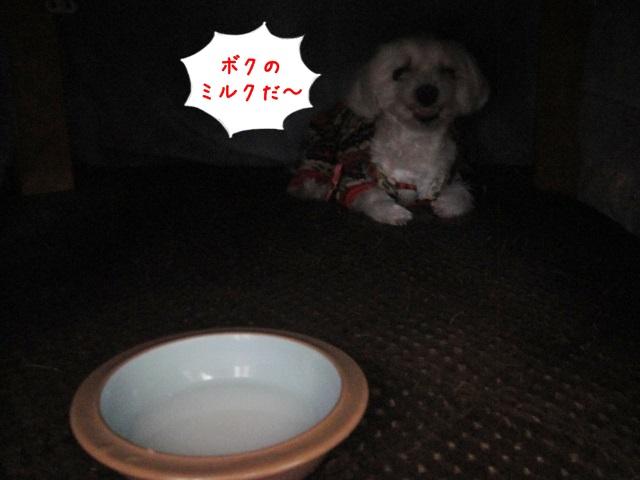 20141108131845c3d.jpg