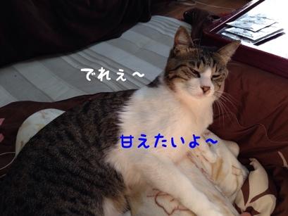 fc2blog_20140115181640feb.jpg