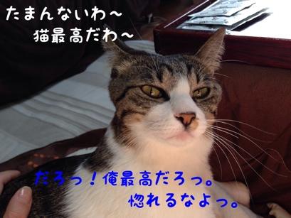fc2blog_20140115181726160.jpg