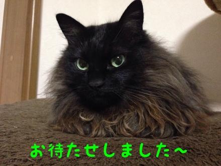 fc2blog_20140127115013e16.jpg