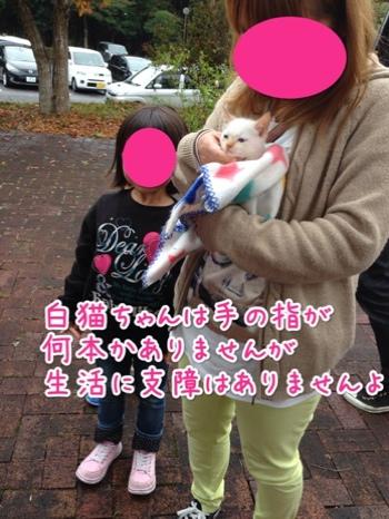 fc2blog_201411301648188db.jpg