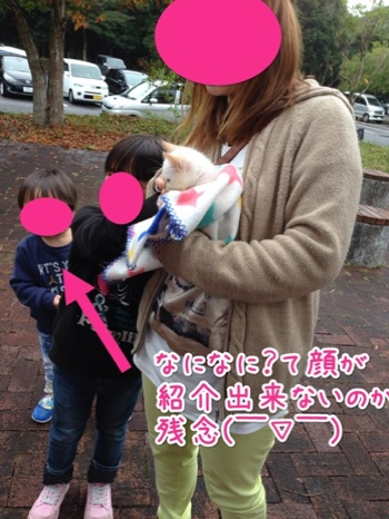 fc2blog_201411301649549a6.jpg