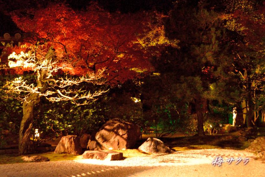 京都13(3)変更済