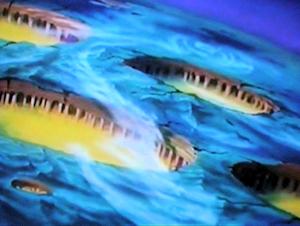 ガミラス星外殻地表のアップ