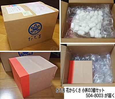 Tachikichi504_8003_1.jpg